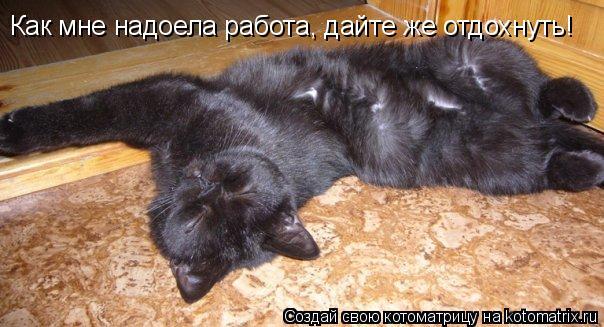 Котоматрица: Как мне надоела работа, дайте же отдохнуть!