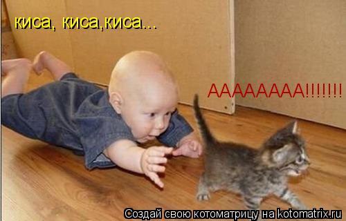 Котоматрица: киса, киса,киса... АААААААА!!!!!!!