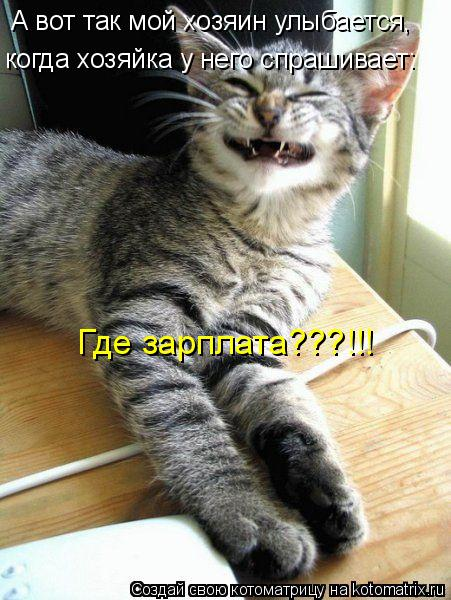 Котоматрица: А вот так мой хозяин улыбается, когда хозяйка у него спрашивает: Где зарплата???!!!