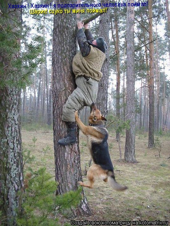Котоматрица: Хазяин ! Хазяин ! я подозрительного человека поймал! Шарик! сцуко ты миня поймал!