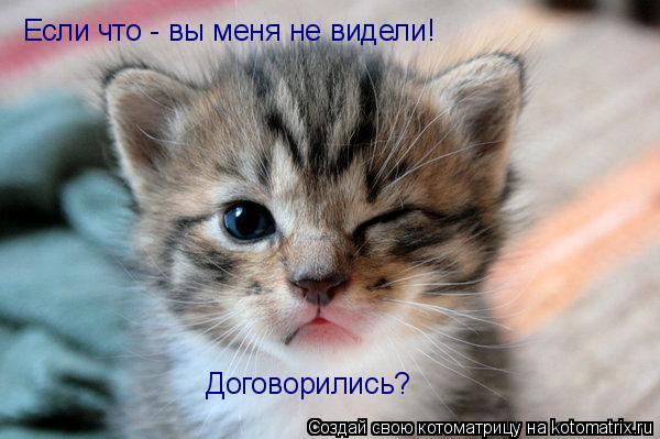 http://kotomatrix.ru/images/lolz/2009/06/20/UP.jpg
