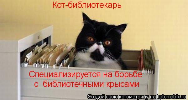 Котоматрица: Кот-библиотекарь Специализируется на борьбе с  библиотечными крысами
