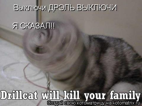 Котоматрица: Выключи ДРЭЛЬ ВЫКЛЮЧИ  Я СКАЗАЛ!!
