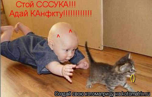 Котоматрица: Стой СССУКА!!!  () Адай КАнфкту!!!!!!!!!!!! ^ ^