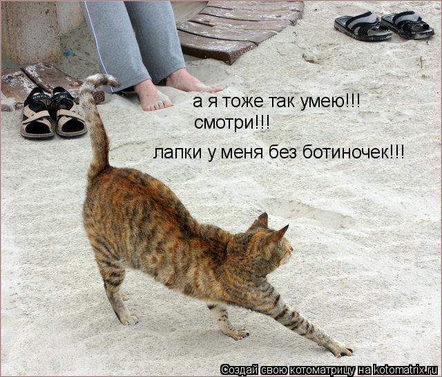 Котоматрица: а я тоже так умею!!! смотри!!! лапки у меня без ботиночек!!!