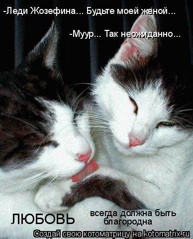 Котоматрица: -Муур... Так неожиданно... -Леди Жозефина... Будьте моей женой... ЛЮБОВЬ всегда должна быть  благородна