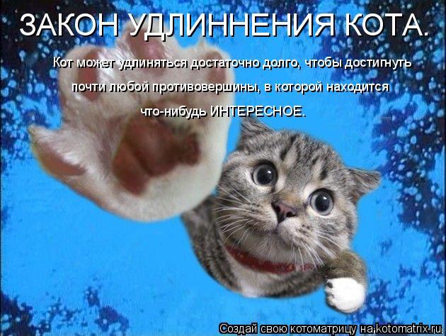 Котоматрица: ЗАКОН УДЛИННЕНИЯ КОТА. Кот может удлиняться достаточно долго, чтобы достигнуть  почти любой противовершины, в которой находится  что-нибуд