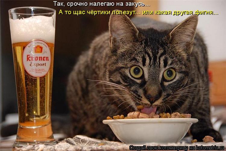 Котоматрица: Так, срочно налегаю на закусь... А то щас чёртики полезут... или какая другая фигня...