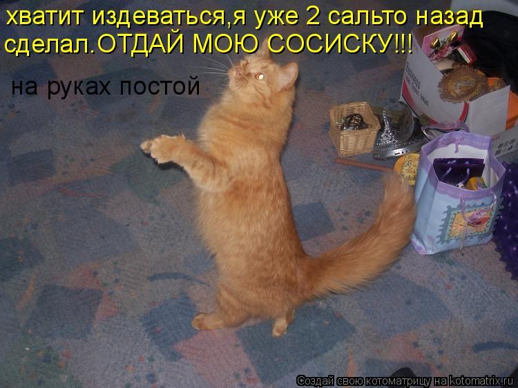 Котоматрица: хватит издеваться,я уже 2 сальто назад сделал.ОТДАЙ МОЮ СОСИСКУ!!! на руках постой
