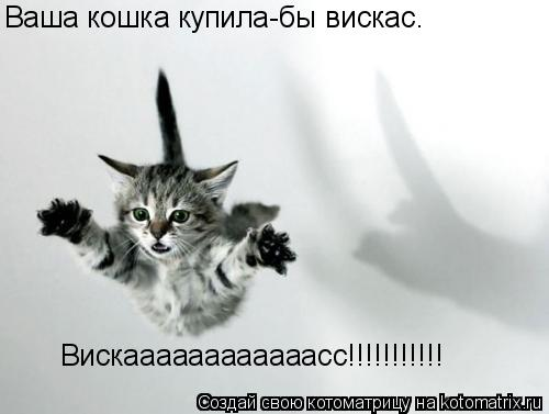 Котоматрица: Вискаааааааааааасс!!!!!!!!!!! Ваша кошка купила-бы вискас.