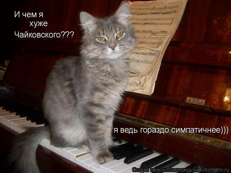Котоматрица: И чем я  хуже Чайковского??? я ведь гораздо симпатичнее)))