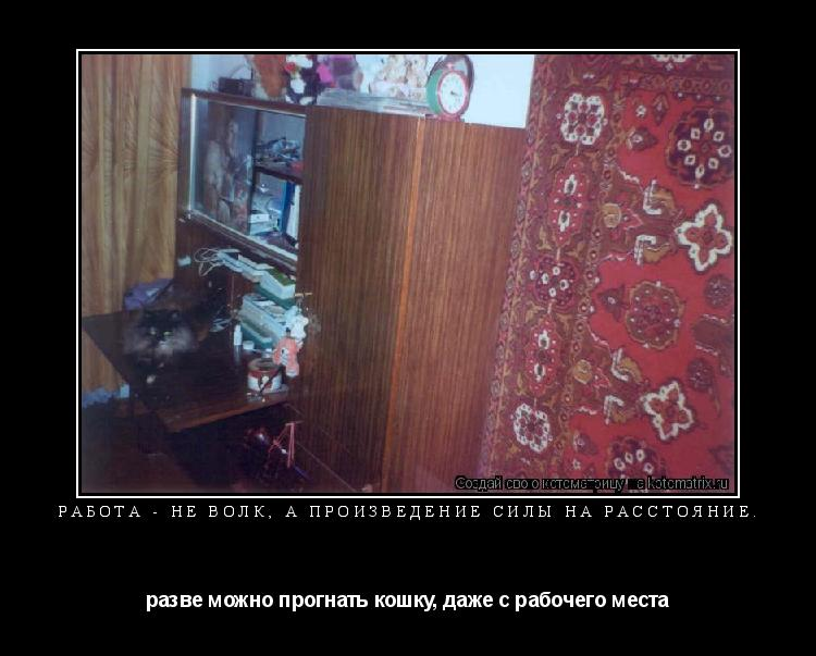Котоматрица: Работа - не волк, а произведение силы на расстояние. разве можно прогнать кошку, даже с рабочего места