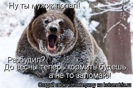 Котоматрица: Ну ты мужик попал! Разбудил? До весны теперь кормить будешь, а не то заломаю!
