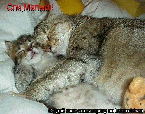 Котоматрица: Спи,Малыш!  Спи,Малыш!