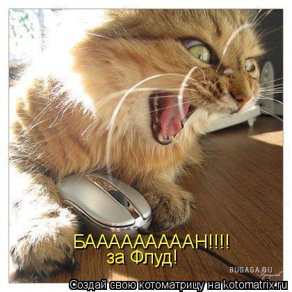 Котоматрица: БАААААААААН!!!! за Флуд!