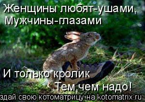 Котоматрица: Женщины любят-ушами, Мужчины-глазами И только кролик Тем,чем надо!