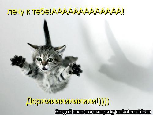 Котоматрица: лечу к тебе!ААААААААААААА! Держиииииииииии!))))