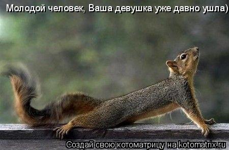 Котоматрица: Молодой человек, Ваша девушка уже давно ушла)