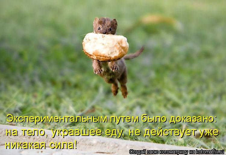 http://kotomatrix.ru/images/lolz/2009/06/21/RgQ.jpg