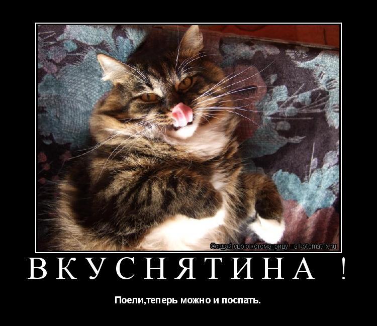 Котоматрица: Вкуснятина ! Поели,теперь можно и поспать.