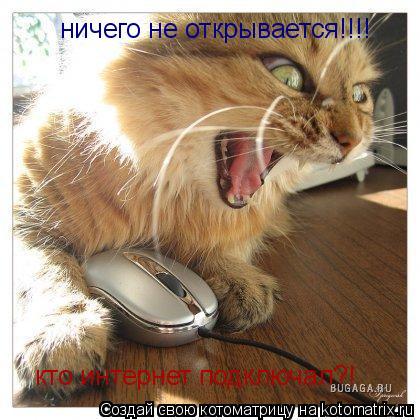 Котоматрица: ничего не открывается!!!! кто интернет подключал?!