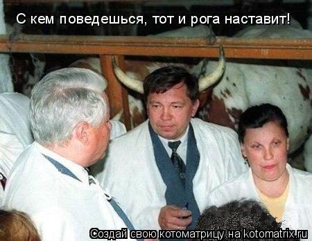Котоматрица: С кем поведешься, тот и рога наставит!