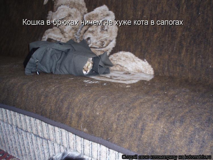 Котоматрица: Кошка в брюках ничем не хуже кота в сапогах