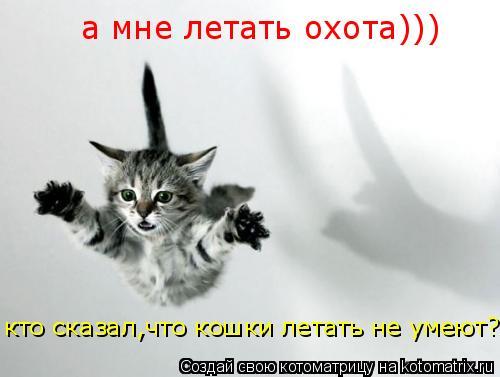 Котоматрица: кто сказал,что кошки летать не умеют? а мне летать охота)))