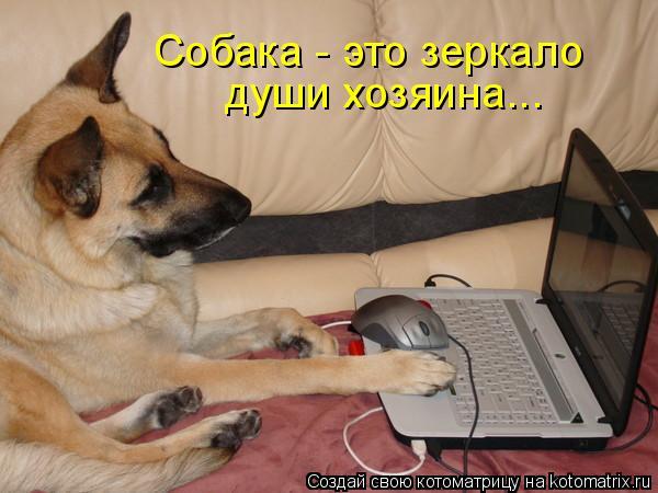 Котоматрица: Собака - это зеркало души хозяина...