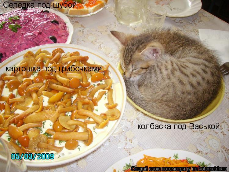 Котоматрица: Селедка под шубой, картошка под грибочками, колбаска под Васькой