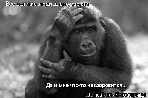 Котоматрица: Все великие люди давно умерли. Да и мне что-то нездоровится...