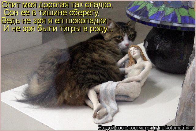 Котоматрица: Спит моя дорогая так сладко, Сон её в тишине сберегу, Ведь не зря я ел шоколадки И не зря были тигры в роду...