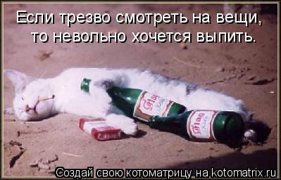 Котоматрица: Если трезво смотреть на вещи,  то невольно хочется выпить.