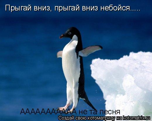 Котоматрица: Прыгай вниз, прыгай вниз небойся..... ААААААААААА не та песня