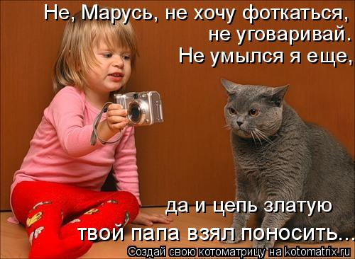 Котоматрица: Не, Марусь, не хочу фоткаться, не уговаривай. Не умылся я еще, да и цепь златую  твой папа взял поносить...