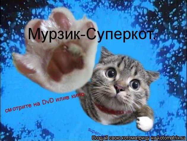 Котоматрица: Мурзик-Суперкот. смотрите на DvD илив кино supercat