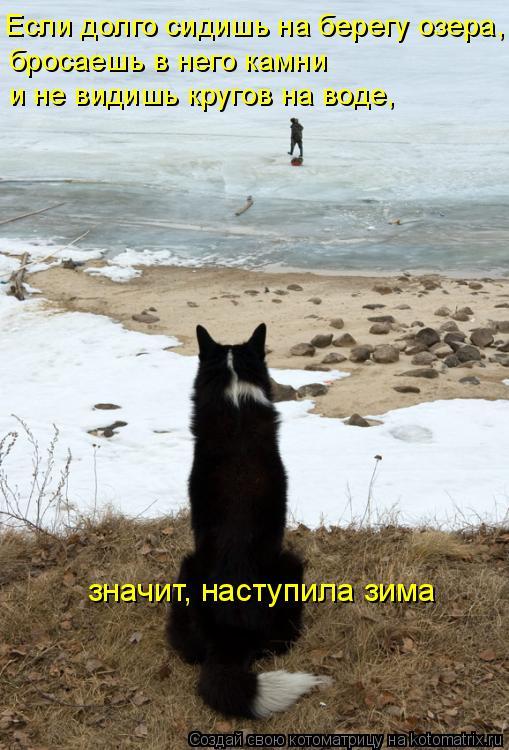Котоматрица: Если долго сидишь на берегу озера,  бросаешь в него камни и не видишь кругов на воде, значит, наступила зима