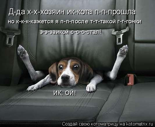 Котоматрица: Д-да х-х-хозяин ик-кота п-п-прошла но к-к-к-кажется я п-п-после т-т-такой г-г-гонки з-з-заикой с-с-с-стал! ИК, ОЙ!