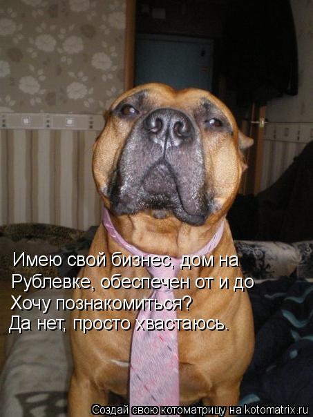 Котоматрица: Имею свой бизнес, дом на   Рублевке, обеспечен от и до  Хочу познакомиться?  Да нет, просто хвастаюсь.