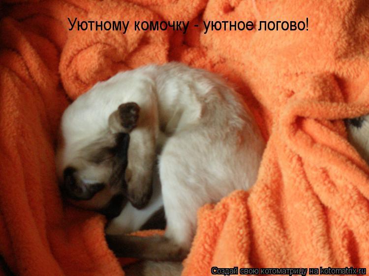 Котоматрица: Уютному комочку - уютное логово!