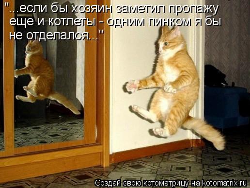 """Котоматрица: """"...если бы хозяин заметил пропажу  еще и котлеты - одним пинком я бы не отделался..."""""""