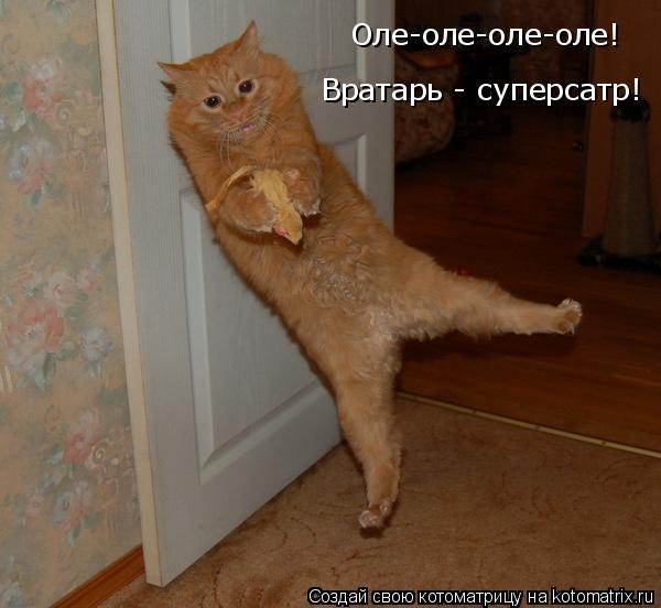 Котоматрица: Оле-оле-оле-оле! Вратарь - суперсатр!