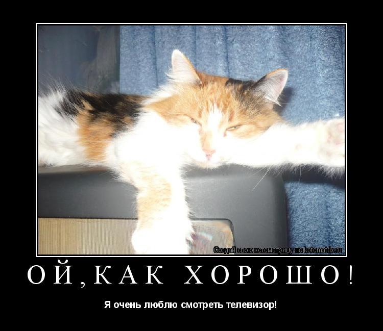 Котоматрица: Ой,как хорошо! Я очень люблю смотреть телевизор!