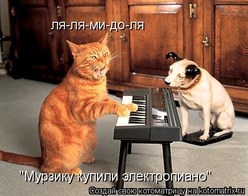 "Котоматрица: ля-ля-ми-до-ля ""Мурзику купили электропиано"""