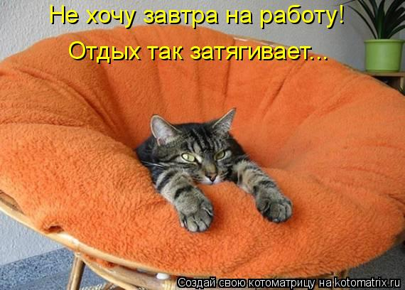 Котоматрица: Не хочу завтра на работу!  Отдых так затягивает...