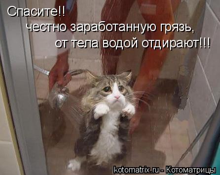 Котоматрица: Спасите!! честно заработанную грязь,  от тела водой отдирают!!!