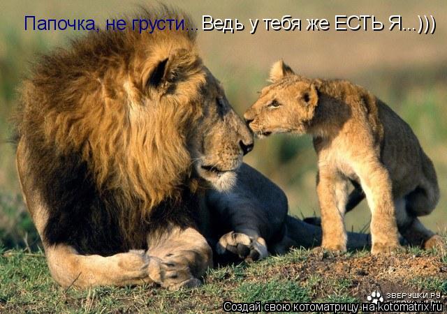 Котоматрица: Папочка, не грусти... Ведь у тебя же ЕСТЬ Я...)))