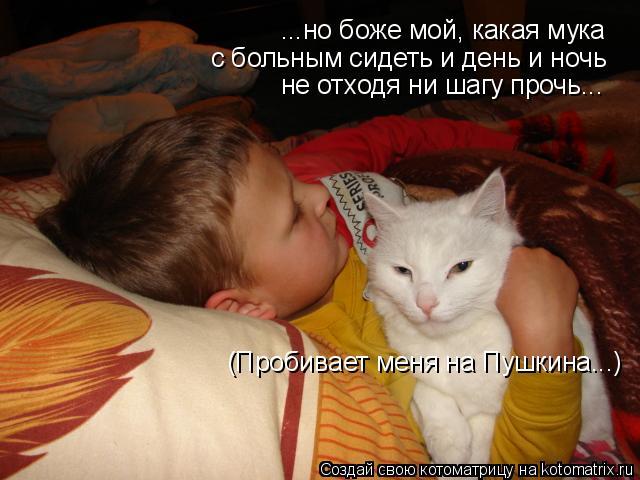 Котоматрица: ...но боже мой, какая мука с больным сидеть и день и ночь не отходя ни шагу прочь... (Пробивает меня на Пушкина...)