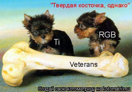 """Котоматрица: Ti RGB Veterans """"Твердая косточка, однако"""""""