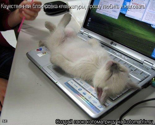Котоматрица: Качественная блокировка клавиатуры, прошу любить и жаловать!
